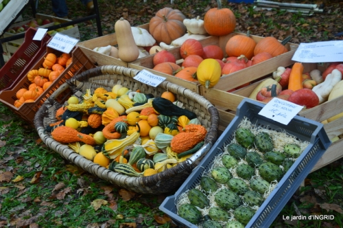 Issigeac,citrouilles ,rhus,automne,jardin 013.JPG