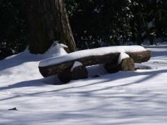 janvier fevrier 2012 110.JPG