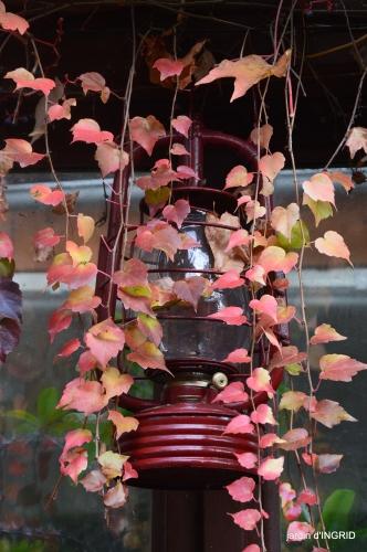 couleurs d'automne,bouquet,lune 119.JPG