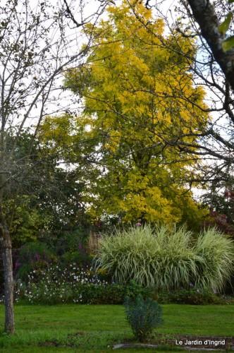 jardin de Marie,éoliennes,Ciron,Angles,Fontgombault 067.JPG