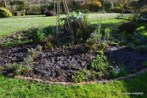 semis,bassin,tour du jardin 124.JPG