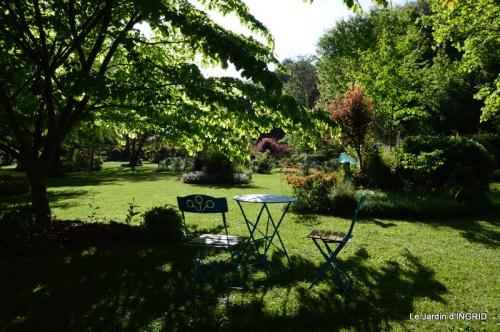 jardin soir et matin 049.JPG