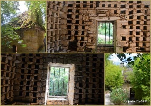 2020-07-13 bambous Roque Gageac,jardin,bouquet.jpg