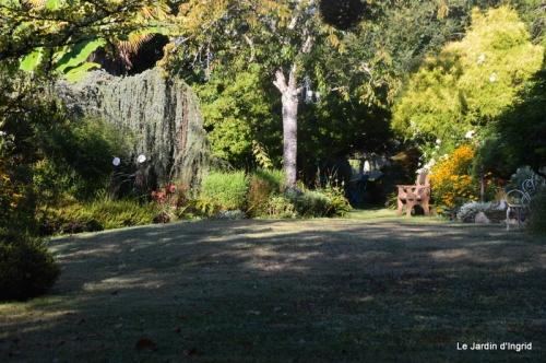 mon coin,Monique,les oies,mon jardin 032.JPG