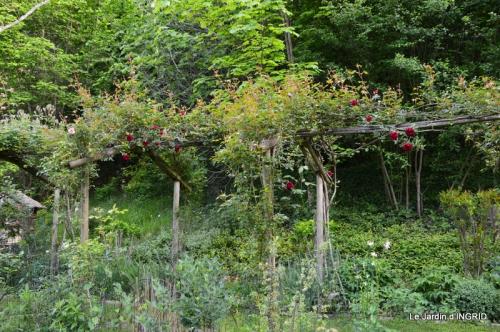 jardin soir et matin 077.JPG