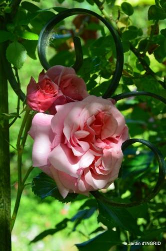 les roses,les 4 filles,jardin,Julie,coquelicots,cygnes 024.JPG