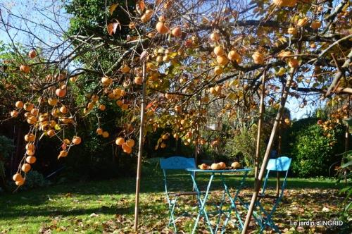 décos,kakis,automne 035.JPG
