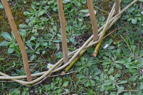 l'osier,stuctures,fleurettes printemps 076.JPG