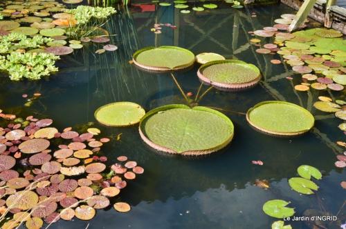 les jardins d'eau de Carsac 156.JPG