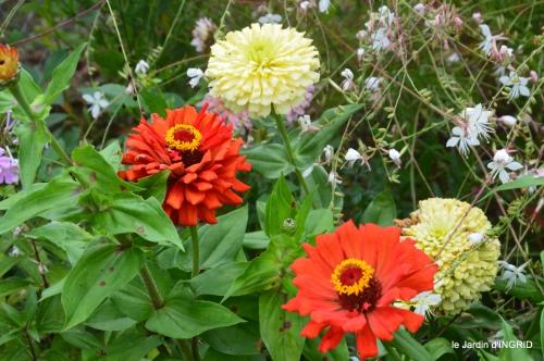 jardin,papillons,anniversaire d'Ines,bricolage 078.JPG