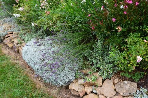 tournesols,pt jardin,nénuphard,libellules,lavande bouquet,carava 100.JPG