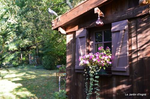jardin,puces Lasmonzie,asters 017.JPG