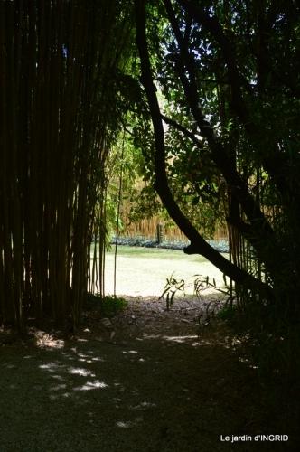 bambous Roque Gageac,jardin,bouquet 180.jpg