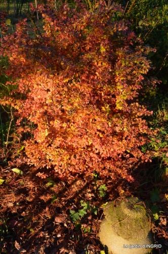 fin automne,décos Noel,Lalinde by night 004.JPG