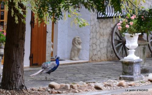 moulin,les jardins d'Au-delà,Brantôme 094.JPG