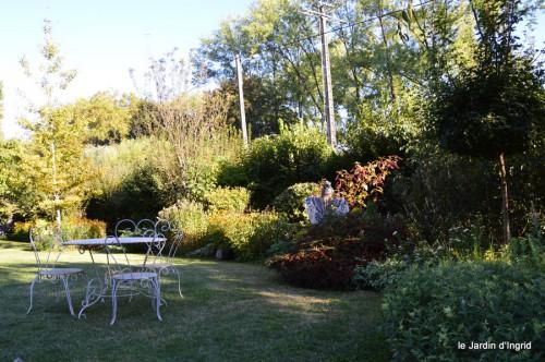 jardin,asters,fleurs blanches,chatte,rosiers roses 043.JPG