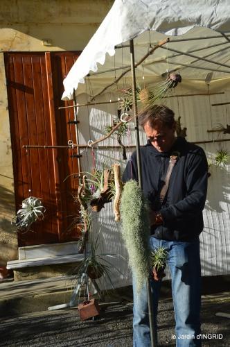 coquelicots,fête des fleurs Lalinde,fouleix,jardinage 071.JPG