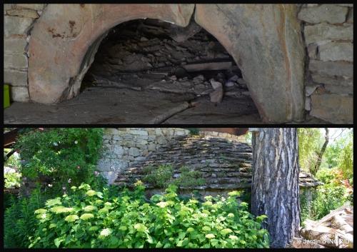2017-06-10 le jardin de Frescati,roses6.jpg