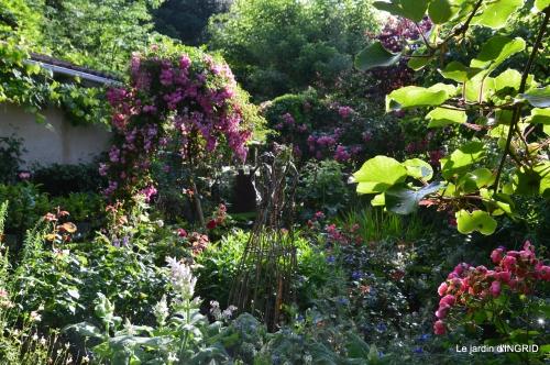 jardin pluie,Inès,Bébés cygnes,bouquet,canal 088.JPG