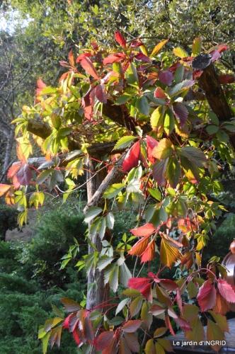male ancienne,septembre jardin,couronne,bouquet 080.JPG