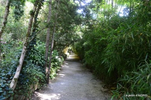 bambous Roque Gageac,jardin,bouquet 182.jpg