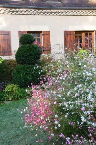 jardin en septembre,les cygnes 089.JPG