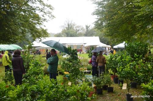 Neuvic,jardin,champignons canal 147-001.JPG