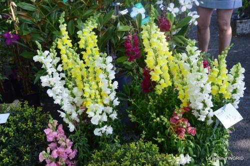 muguet,féte des fleurs Lalinde,jardin 078.JPG