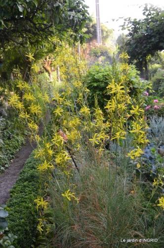 sentier des cygnes,hémérocalles,bouquet,jardin 079.JPG