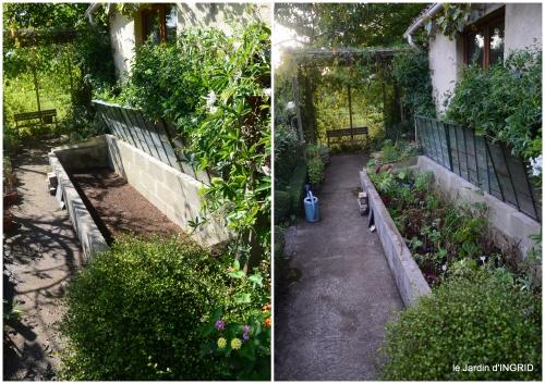 2017-09-14 Tuillières,stenbergias,Jaune,jardin,chassis.jpg