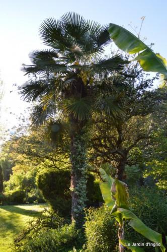 Ciron,pivoine,escargot,jardin,ancolie,glycine 201.JPG