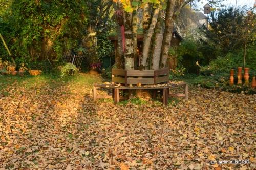 canal,automne,tonte des feuilles 062.JPG