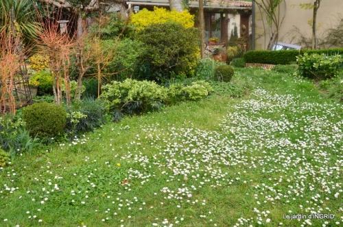 canal,jardin,dentelles 039.JPG