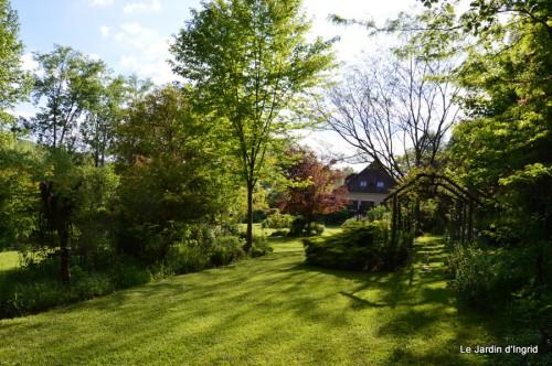roses,Lalinde,toit cabane,pourpre,eglise,jardin tondue 125.JPG