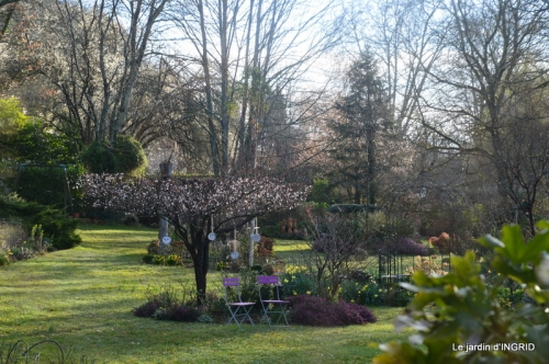 reportage,jardin tonte, 002.JPG