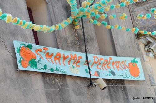 fête de la citrouille,jardinage,jardin 081.JPG
