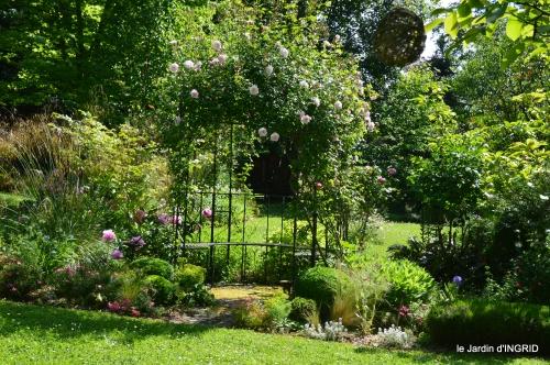 cygnes,Sophie,jardin en mai 069.JPG