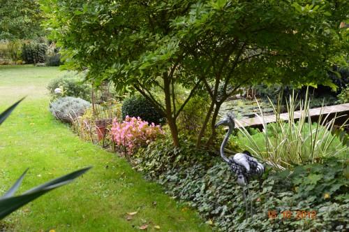 citrouilles,jardin,Combarel 069.JPG
