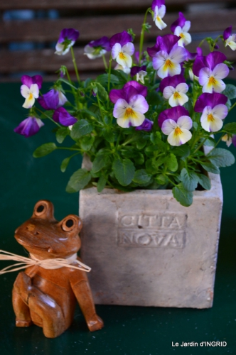 jardin Mme Perichou,grandes fleurs,bouquet,jardin 046.JPG