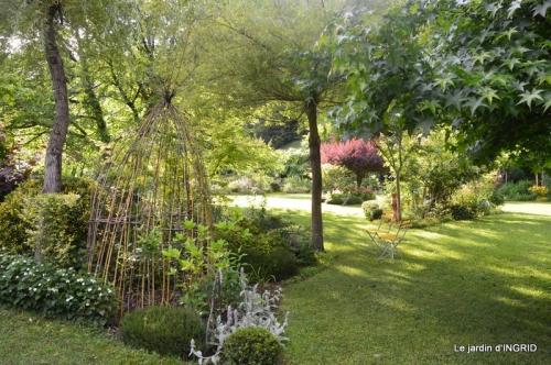 mon jardin,dégats buis, 086.JPG