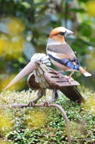 vue sur la terrasse,crocus,oiseaux, 014.JPG