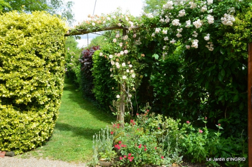 fête de la fraise Vergt,roses jardin 169.JPG