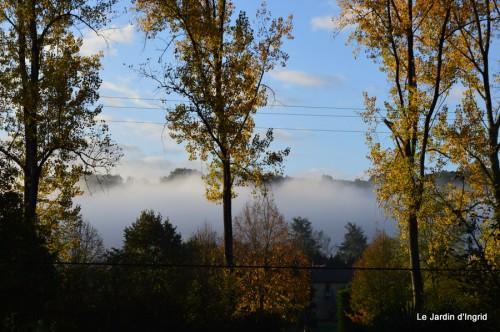automne,arbres,inondation 039.JPG