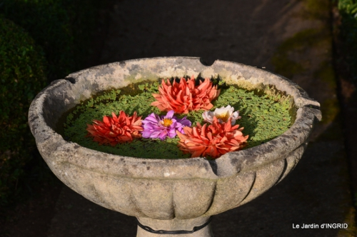 confiture,bouquet,petit jardin 072.JPG