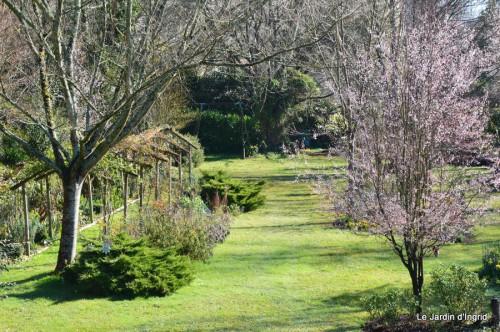 bouquet mamy,jacinthes,semis,jardin 051.JPG