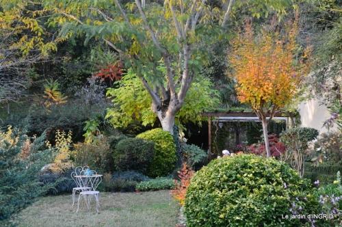 canal automne ,jardin,Ines 048.JPG