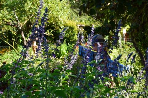 panier,composition,St Astier,jardin,lavande 114.JPG