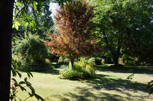 Fabien et Mélo,les filles,tomates,jardin ombre 140.JPG