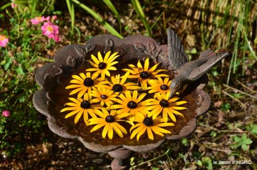 Belves puces,jardin,cygnes,bouquet blanc,arrosage 059.JPG