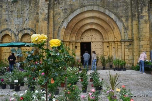 Colombier,Cadouin,jardin,roses,pluie 055.JPG